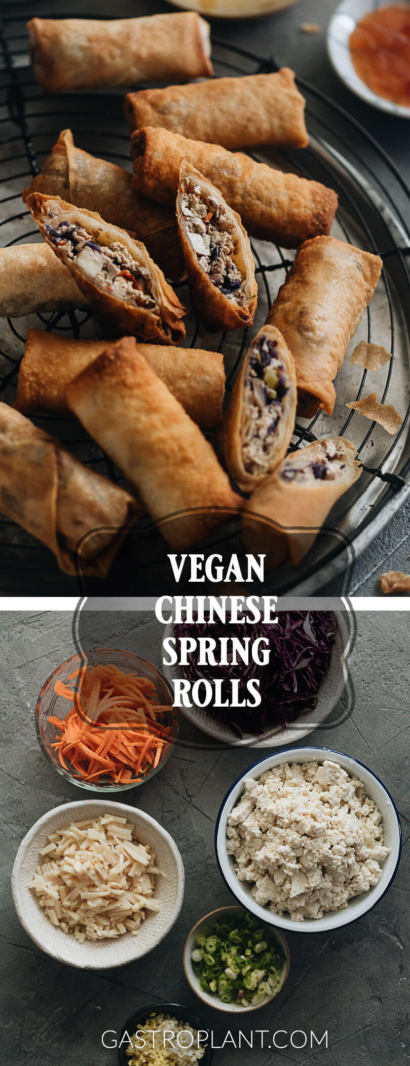 Vegan Chinese spring roll collage