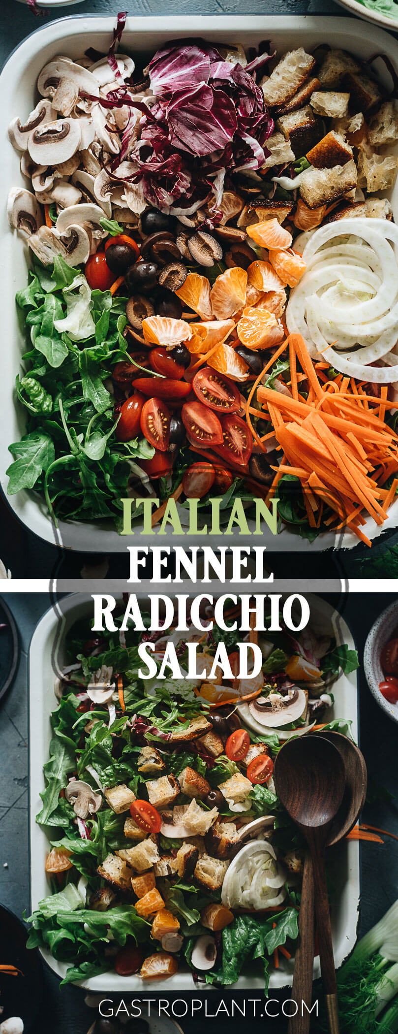 Easy Healthy Italian Fennel and Radicchio Salad Collage