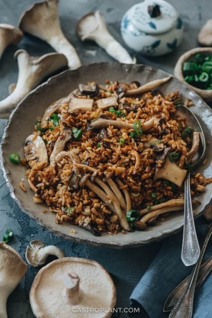 A bowl of umami vegan mushroom fried rice with green onion sprinkled on top
