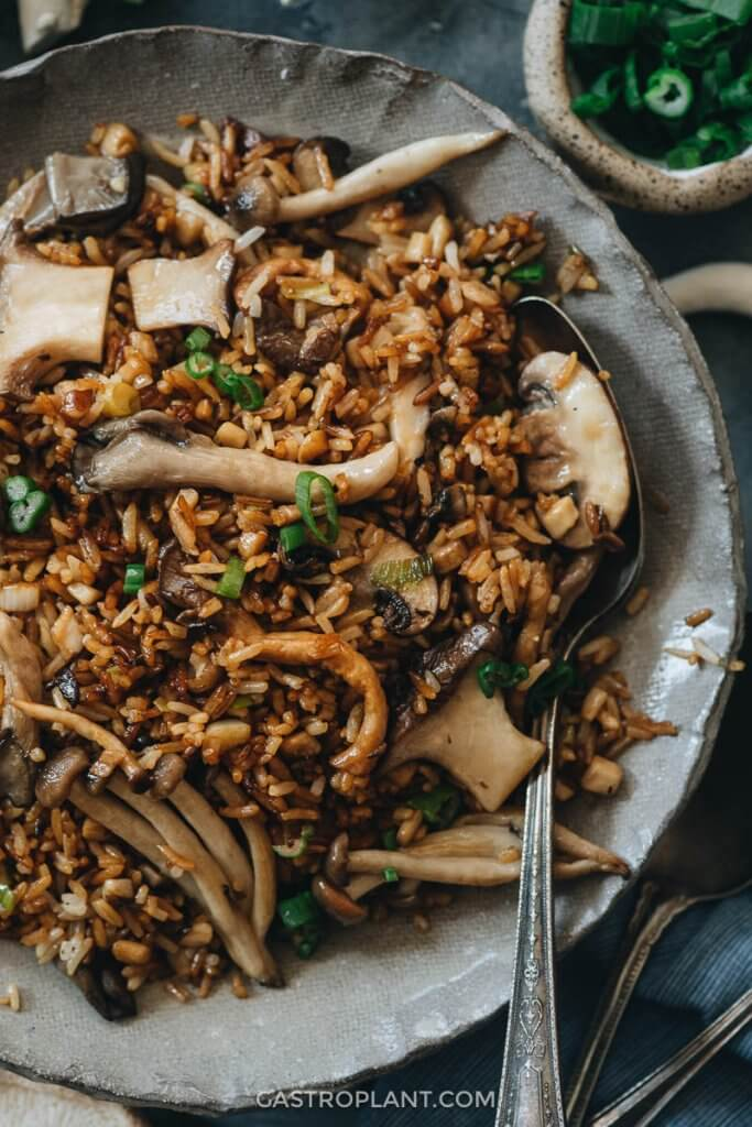 A bowl with lots of rice and mushrooms